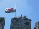 Welsh Flag over Castell Conwy